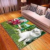 LGXINGLIyidian Alfombra Hermoso Mundo Animal Natural Alfombra Suave Antideslizante De Decoración del Hogar De Impresión 3D T-2978E 80X150Cm