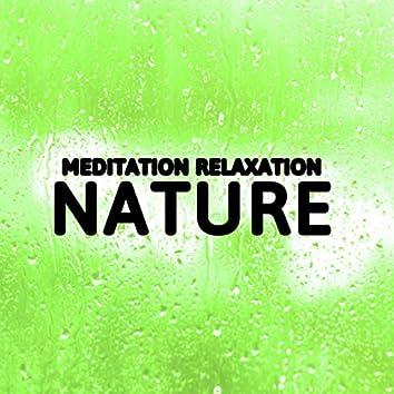 Meditation Relaxation Nature