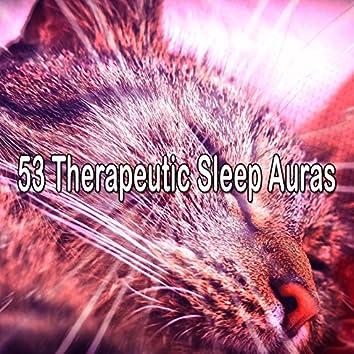 53 Therapeutic Sleep Auras