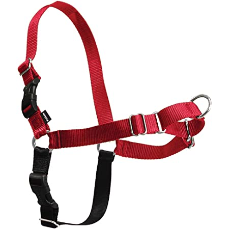 PetSafe Easy Walk Dog Harness, No Pull Dog Harness, Red/Black, Small