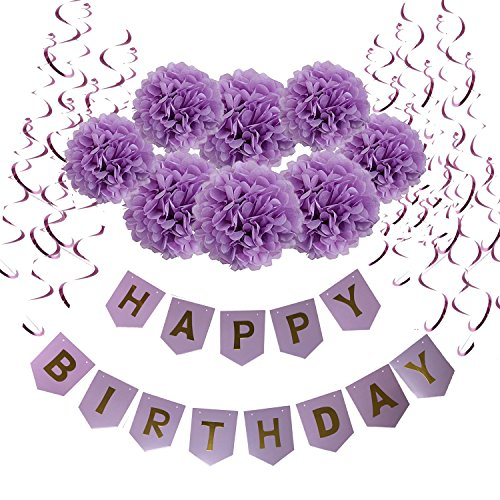 Wartoon Happy Birthday Banner Bunting with 8 Tissue Paper Pom Poms Flowers and 15 Hanging Swirl Decorations for Birthday Party Decorations (Purple)