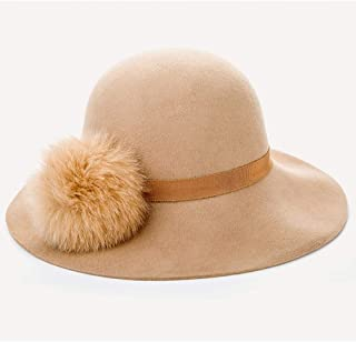 Graceful Autumn and Winter Fashion Simple Wool Tweed Cap Cute Fur Ball Wool Hat Wild Ms. Dayan Mao (Color : Brown)