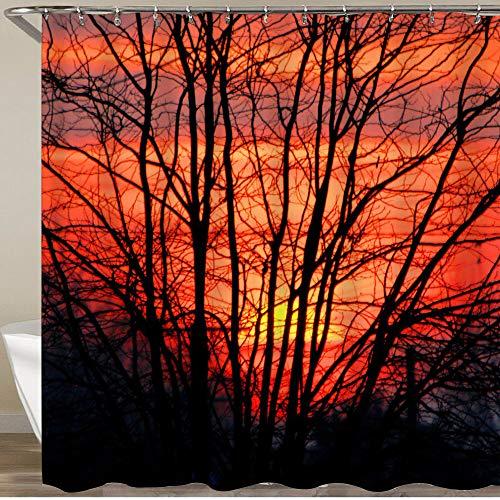 KGSPK Cortinas de Ducha,Acacio árbol Negro en una Puesta de Sol en la campiña Argentina,Impermeable Cortinas Baño y Lavables Cortinas Bañera 180x180CM