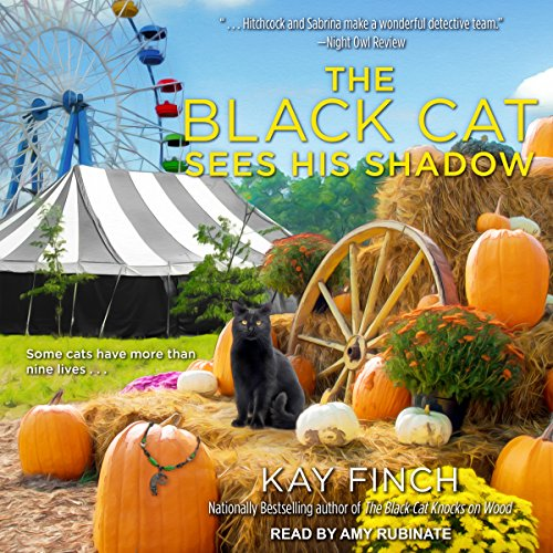 The Black Cat Sees His Shadow audiobook cover art