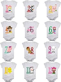 Kit Body de Bebê Mês Aniversário Menina - 12 bodies