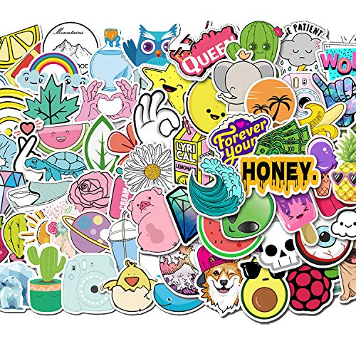 100PCS Water Bottle Stickers for Laptop,Cellphone,Computer,Skateboard,Guitar,Luggage,Car,Fridge,Cup,Bike,Helmet Decals,Waterproof PVC Stickers Gifts for Kids Adults Teens Girls Boys