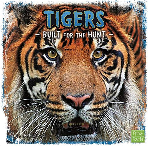 Tigers: Built for the Hunt (First Facts: Predator Profiles)