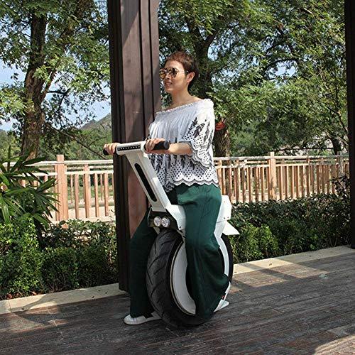 Monowheel XYDDC Einrad kaufen  Bild 1*