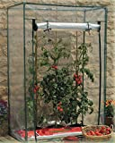 Greenhouse Tomatoes PVC Cover