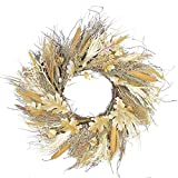 """Northlight Autumn Harvest Cattail and Wheat Artificial Thanksgiving Wreath Unlit, 24"""", Brown"""