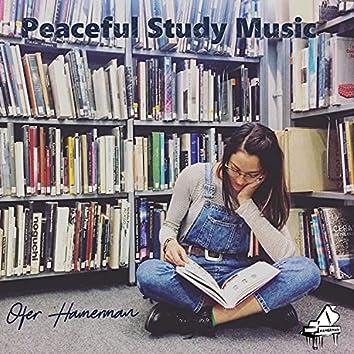 Peaceful Study Music