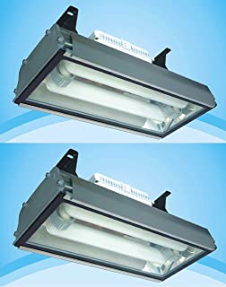 Pair Induction Grow Light Quantity 2 Greenhouse Hanging 400W Lamp for Plants