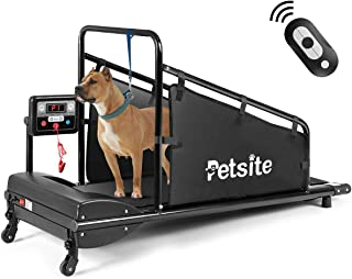 treadmill for a dog