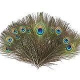 BAKHK 25 Stück Natürliche Pfauen Federn von 25-30cm, Naturfedern zur Dekoration