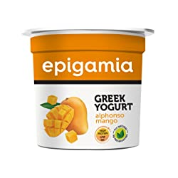 Epigamia Greek Yogurt, Alphonso Mango, 90g