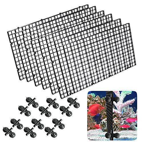 Gurxi 6 Stück Aquarien Tablett Tank Trennwand Plastik Aquarium Isolation Plastik Aquarium Divider Kunststoff Aquarium Isolation Schwarz für Verschiedene Fische zu Trennen den Fisch vom Kampf Abhalten