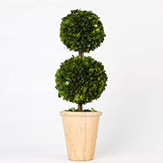 Preserved Boxwood Two Sphere TopiaryHome Plant Potted in a Mossy Stone Planter, Indoor use only(20 inch Tall)