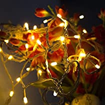 Lexton 10 Meter Decorative LED String Light Plug Sourced |for Indoor & Outdoor Decorations (Warm White, Pack of 1)