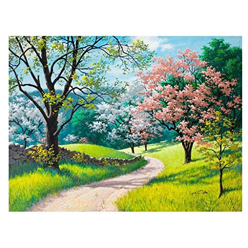 """Paint by Number Kits Cherry Blossoms for Adults Landscape DIY Oil Painting Kit Easy for Beginners, Sunflower in Mason Jar,16""""×20"""" (Colorful)"""