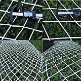 Red de Seguridad para Niños Escalera Balcón Barandilla Zona de Juegos Red de Protección Cuerda de Nailon Decoración Interior Casa del árbol Valla Colgante Plantas Escalada Ruck Re(Size:1*3m/3.3*9.8ft)