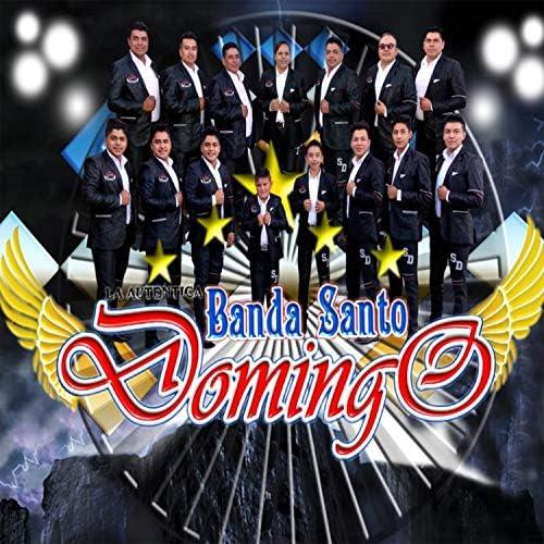 La Auténtica Banda Santo Domingo