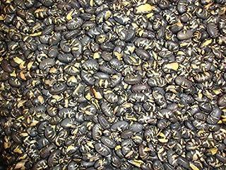 Geroosterde zwarte sojabonen licht gezouten 1 Kg