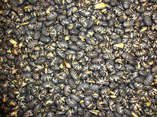 Fèves de Soja noires 1 Kg ,grillées, légèrement salées ,riches en protéines,sans Gluten et sans OGM.
