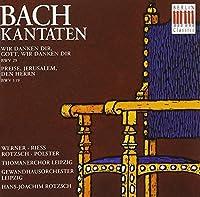 Bach: Cantatas, BWV 29 & 119 by Bach (1996-10-15)