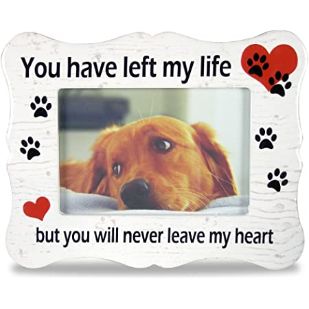 Amazon Com Banberry Designs Pet Memorial Picture Frame If Love Could Have Saved You Pet Frame Paw Prints And Angel Wings Pet Supplies