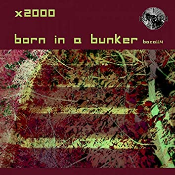 Born in a Bunker