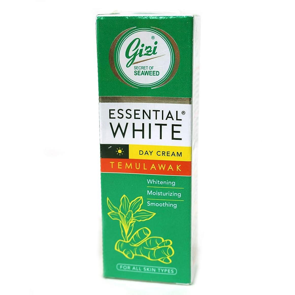 高価なヘッドレス手当ギジ gizi Essential White 日中用スキンケアクリーム チューブタイプ 18g テムラワク ウコン など天然成分配合 [海外直送品]