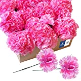 Royal Imports Artificial Carnations, Silk Faux Flowers, for Funeral Arrangements, Wedding Bouquets, Cemetery Wreaths, DIY Crafts - 100 Single 5' Stems - Hot Pink