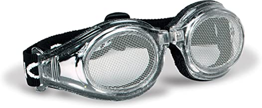 bug eyes goggles