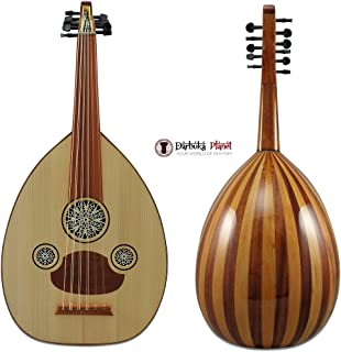 chinese lute instrument