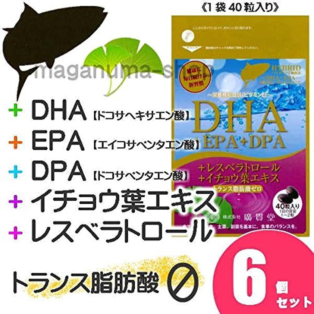 今晩依存する脅迫DHA+EPA+DPA+レスベラトロール+イチョウ葉エキス 6個セット