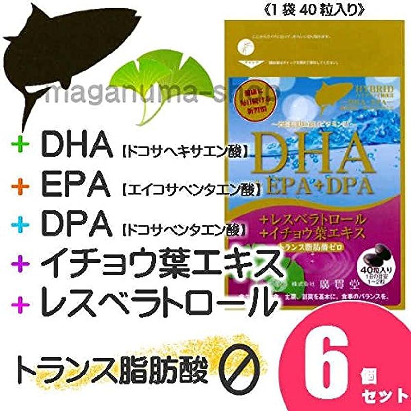 神秘レプリカに対処するDHA+EPA+DPA+レスベラトロール+イチョウ葉エキス 6個セット