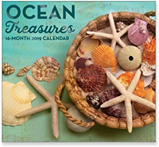 16 Month Wall Calendar 2019: Ocean Treasures - Each Month Displays Full-Color Photograph. September 2018 to December 2019 Planning Calendar