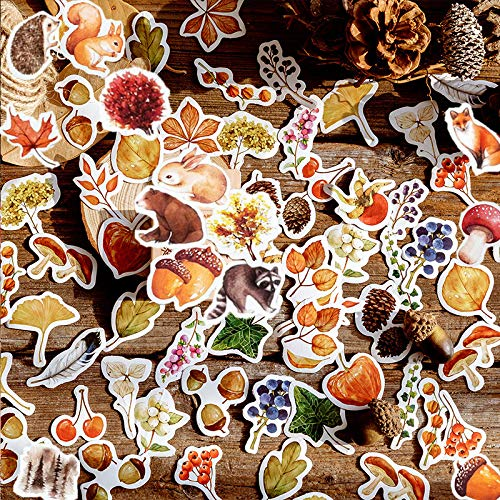 DEASECO Vibrant Forest Wild Animal Creature Plant Adhesive Paper Sticker Pack | Cute Fox Squirrel Rabbit Pine Cones Mushroom Civet Cats Hedgehog Bear with Ginkgo Biloba Maple Leaf (Autumn/Fall Theme)