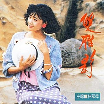 双雁影 (立體演唱會 4)
