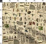 Entomologie, Käfer, Wissenschaft, Bienen, Wespen Stoffe -