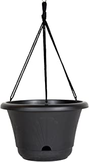 Bloem 010237 Lucca Self Watering Hanging Basket, 13