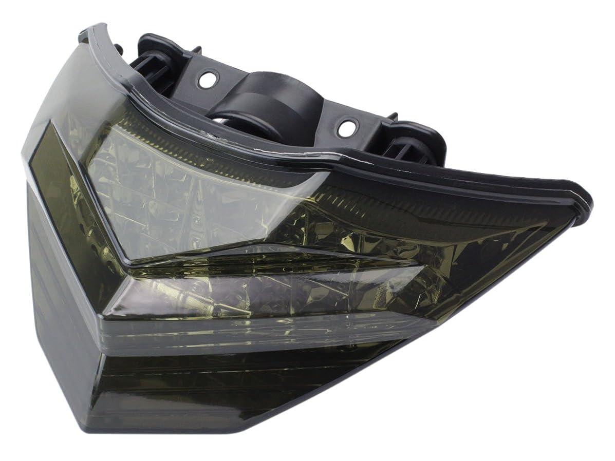 正気処理神経衰弱カワサキ Ninja250 Z250(13年式以降) LEDテール ライト ユニット ウインカー連動可 デイライト内蔵 EX250 ER250 レンズカラー スモーク