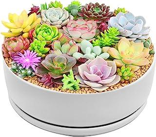 Y&M(TM) Large Planter Pots Indoor, 8.0 inch Modern Garden White Ceramic Round Bowl with Saucer for Succulent Planter Cactus