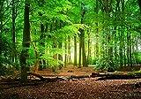 wandmotiv24 Papiers peints Nature d'été de la forêt XXL 400 x 280 cm - 8 pièces Papier peint photo, peinture murale, papier peint à motifs, papier peint intissé vert, arbres, tronc M5667