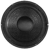 SoundLAB Haut-parleur 38cm 200W 8Ohm - Idéal pour caisson d'enceinte PA standard ou disco