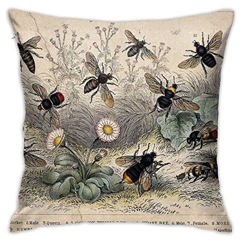 jhgfd7523 Throw Pillow Cover Retro Honey Bee Painting Decorative Pillow Case Home Decor Square 18x18 Inches Pillowcase