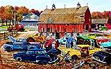 Barnyard Gems 300 pc Jigsaw Puzzle by SunsOut
