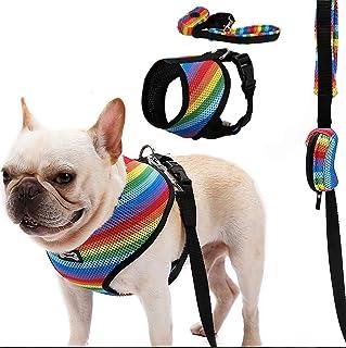 Penivo Hundegeschirr und Leinen Set, weiches Mesh atmungsaktiv Haustier Hund Weste Verstellbarer Gurt mit Poop Tasche Sicherheit für kleine/mittlere/große Hunde