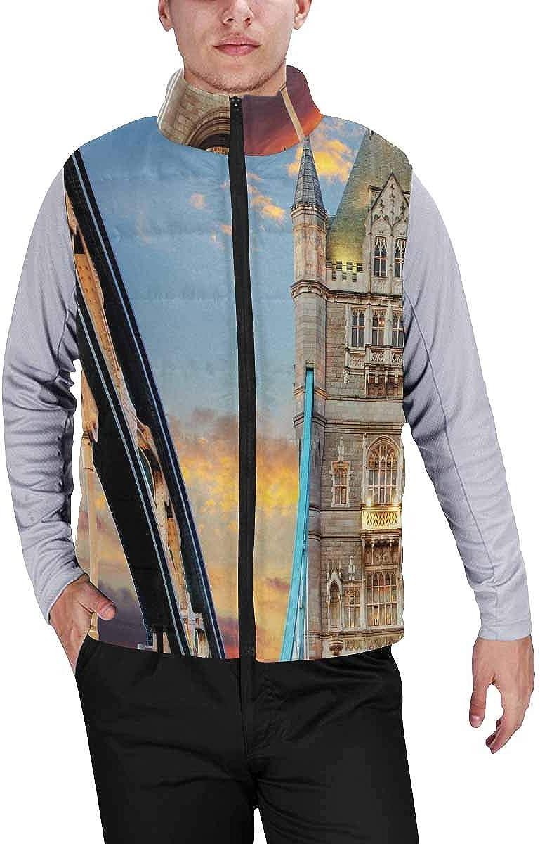 InterestPrint Men's Soft Full Zip Sleeveless Jacket for Running, Hiking Llama and Cactus S
