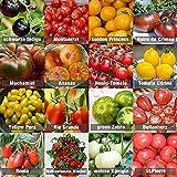 Set di semi di pomodoro 16 x 10 semi di pomodoro mix 100% semi naturali raccolti a mano dal Portogallo, varietà rare e vecchie, semi con alto tasso di germinazione, semi di pomodoro